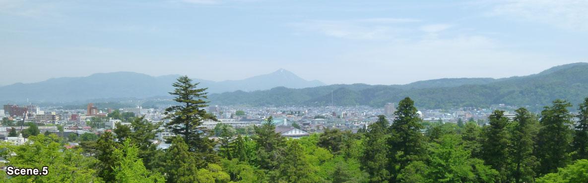 Tsurugajo Castle scene5