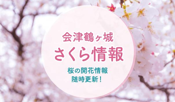 会津鶴ヶ城さくら開花情報